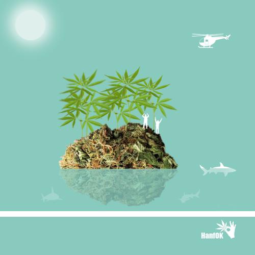 Gestrandet auf einer Einsame CannabisInsel