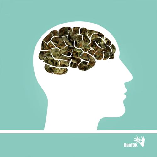 Cannabisgehirn mit Kopf