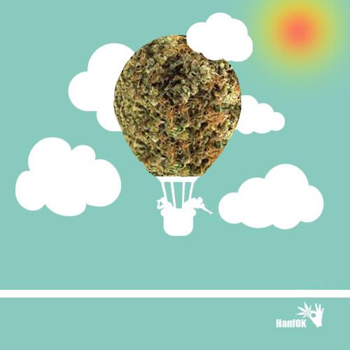 Cannabis-Luftballon