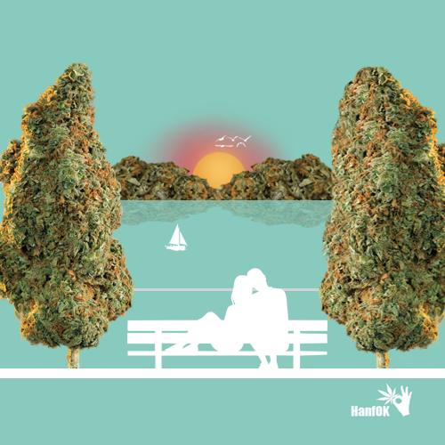 Cannabisbäume und Cannbisberge Verleibtespaar Sonnenuntergang