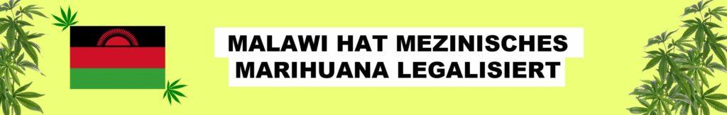 malawi legalisiert hanf